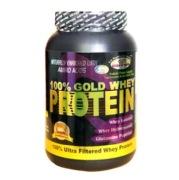 GDYNS 100% Gold Whey Protein,  0.46 lb  Choco