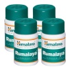 Himalaya Rumalaya,  60 tablet(s)  - Pack of 4