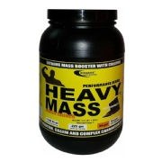 Euradite Nutrition Performance Series Heavy Mass,  2.2 lb  Rich Chocolate