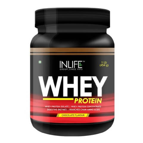 INLIFE Whey Protein,  1 lb  Chocolate