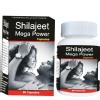 Shivalik Herbals Shilajeet Mega Power,  60 capsules