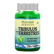 Morpheme Remedies Tribulus Terrestris (500 mg),  60 veggie capsule(s)
