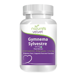 Natures Velvet Gymnema sylvestre Pure Extract (500 mg),  60 capsules