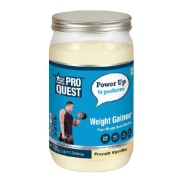 Proquest Weight Gainer,  1.1 lb  French Vanilla